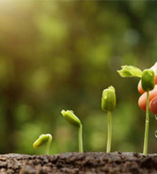 6 Best Practices for Setting Up a Lead Nurturing Program